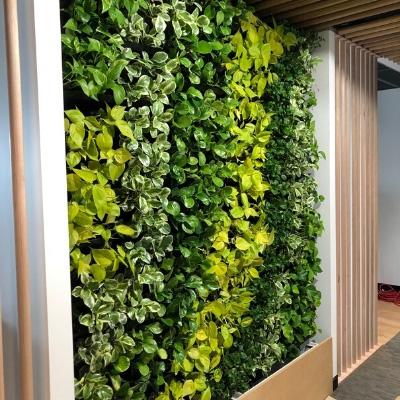 green wall newcastle office