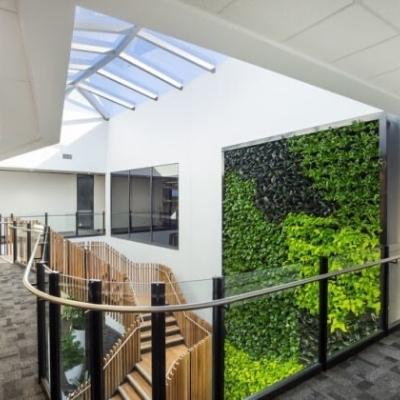green wall vertical garden office 2