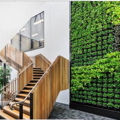green wall vertical garden office 3