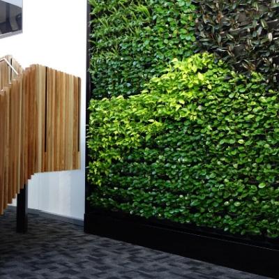 green wall vertical garden office