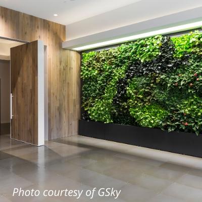 gsky green wall 1