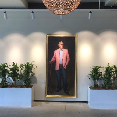 happy plants troughs office 400mm x 400mm