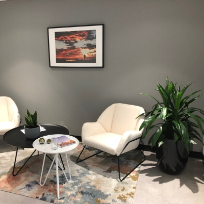 janet craig black cone and sansevieria concrete bowl in office break out