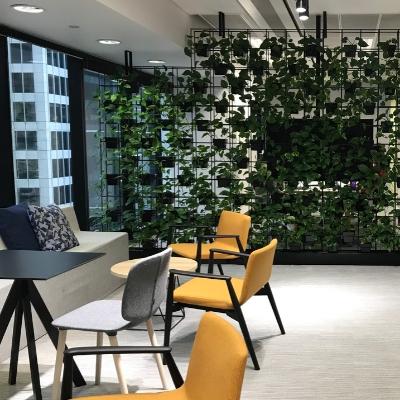 living wall pot plant vertical garden 2