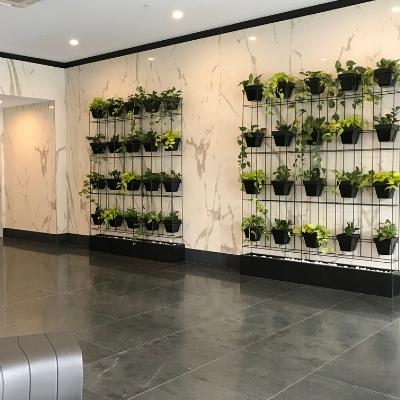 Pot plant vertical garden wall double - Indoor Plant Hire | Office Plant Hire Sydney