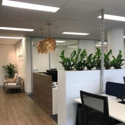 zanzibar gem client tambour unit plants