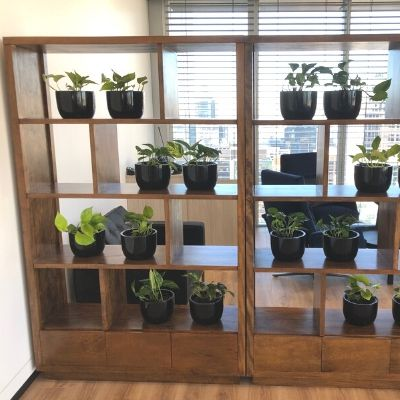 office partition room divider black cones with pothos